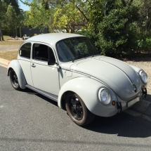 Mick's Grey Bug