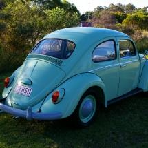 VW Beetle Standard